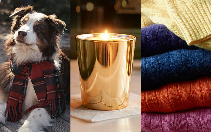 Dog wearing scarf, a gold votive candle, and a stack of cable-knit sweaters in multiple colors.